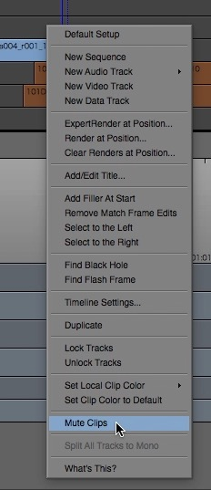 Day 17 #28daysofquicktips - Mute a Video Clip in Avid Media Composer 8 7