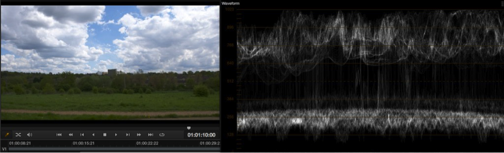 Exposure levels using EI ISO and zebras with the PMW-F5 and RAW 19