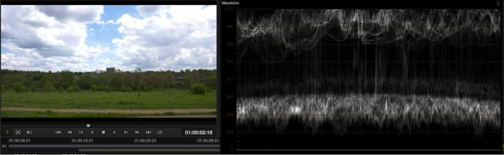 Exposure levels using EI ISO and zebras with the PMW-F5 and RAW 22