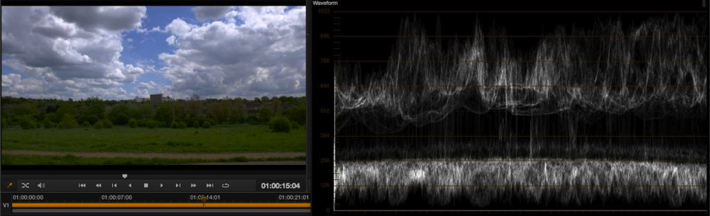 Exposure levels using EI ISO and zebras with the PMW-F5 and RAW 24