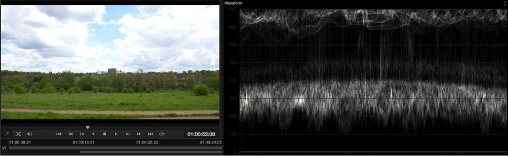 Exposure levels using EI ISO and zebras with the PMW-F5 and RAW 25