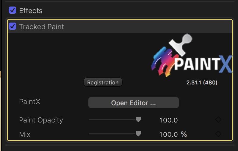 coremelt-paintx