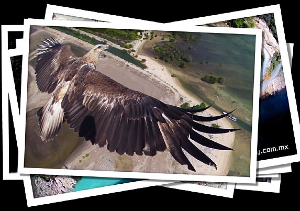 Drone Aerial Photography Contest 1