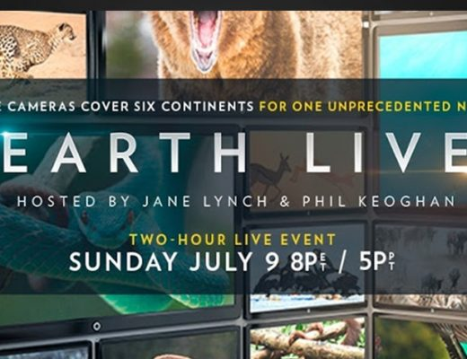 Earth Live: wildlife live in your living room