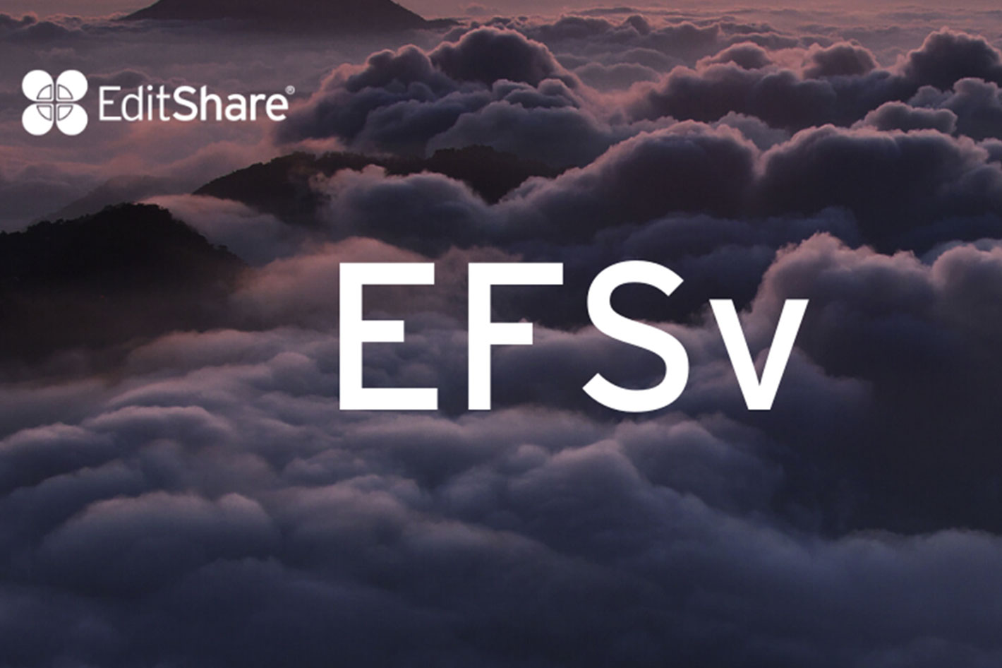 EditShare: new EFSv platform for collaborative editing in the cloud