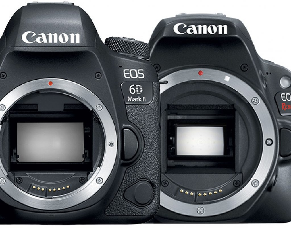 EOS 6D Mark II and SL2: two new DSLRs