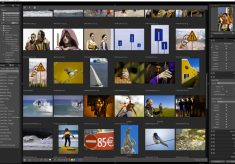 Exposure X: organize your photos your way