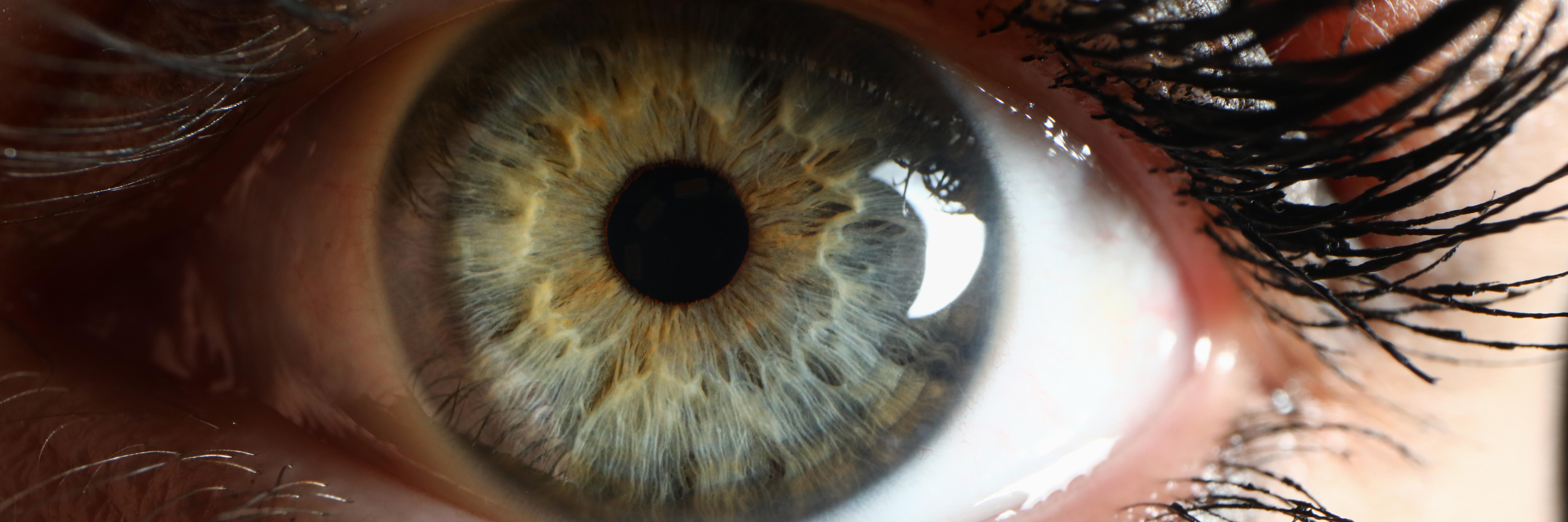human-green-eye-supermacro-closeup-background