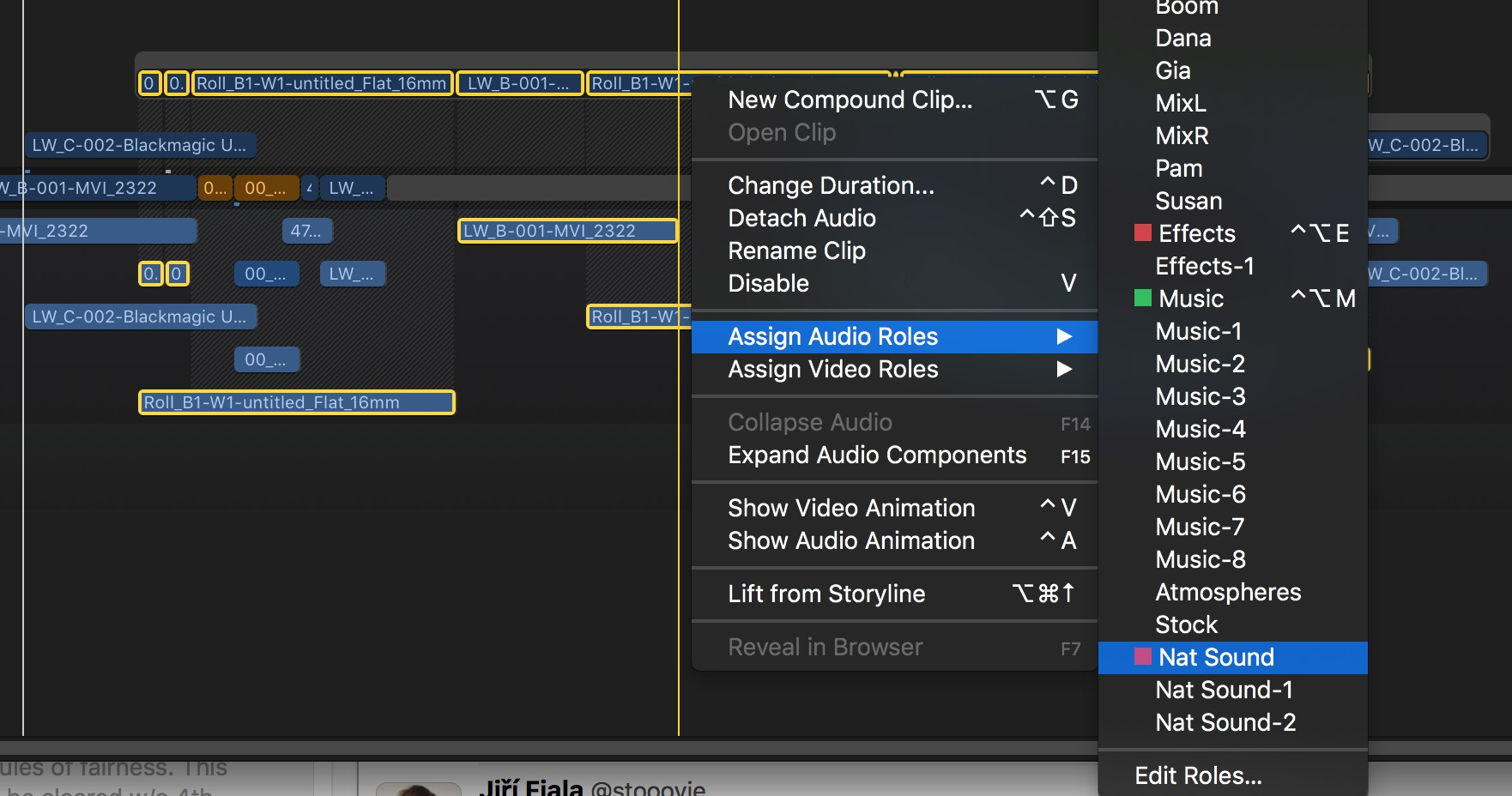 fcpx_lanes_audio_04_apply_nat_sound