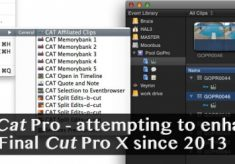Final Cat Pro attempts to enhance FCPX with some missing features