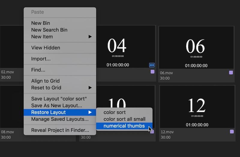 Adobe Premiere Pro Freeform views