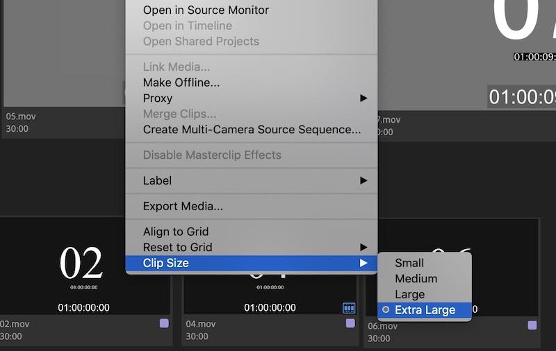 Adobe Premiere Pro size