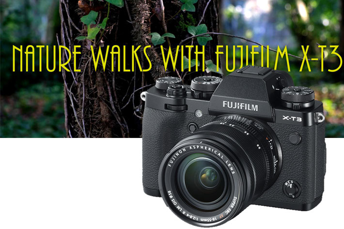 Fujifilm X-T3: hands-on review