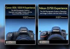 Canon and Nikon: fifth anniversary of Full Stop guides