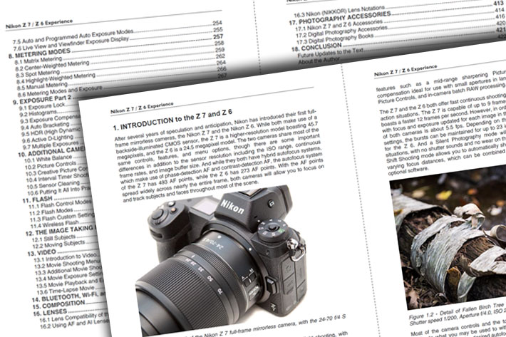 From Nikon Z6 to Canon R or Sony a7: guides to make sense of mirrorless