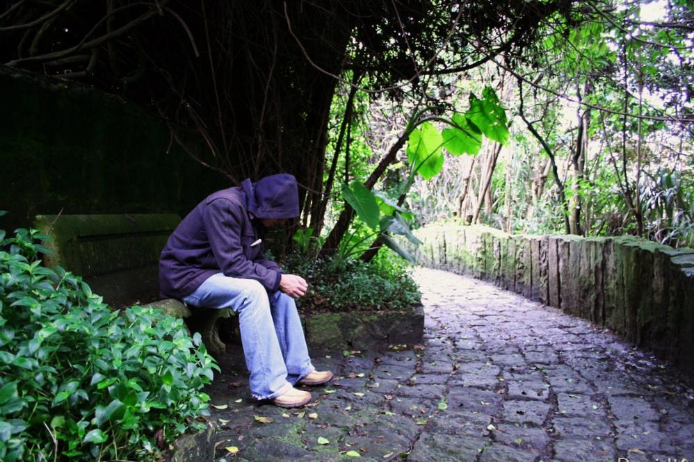 garden 1216086