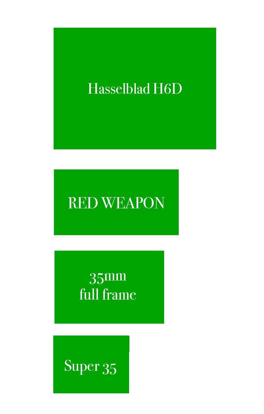 hasselblad-h6d-sensor-size-medium-format
