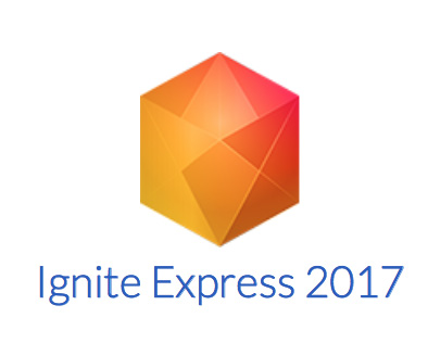 Ignite Express 2017 plug-ins: free FX for your NLE 10