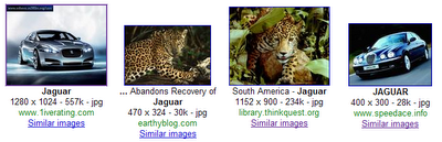 Google Labs launch similar Images 7