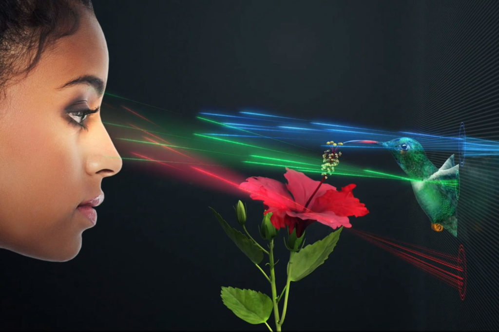 SolidLight, a scalable holographic display for huge video walls