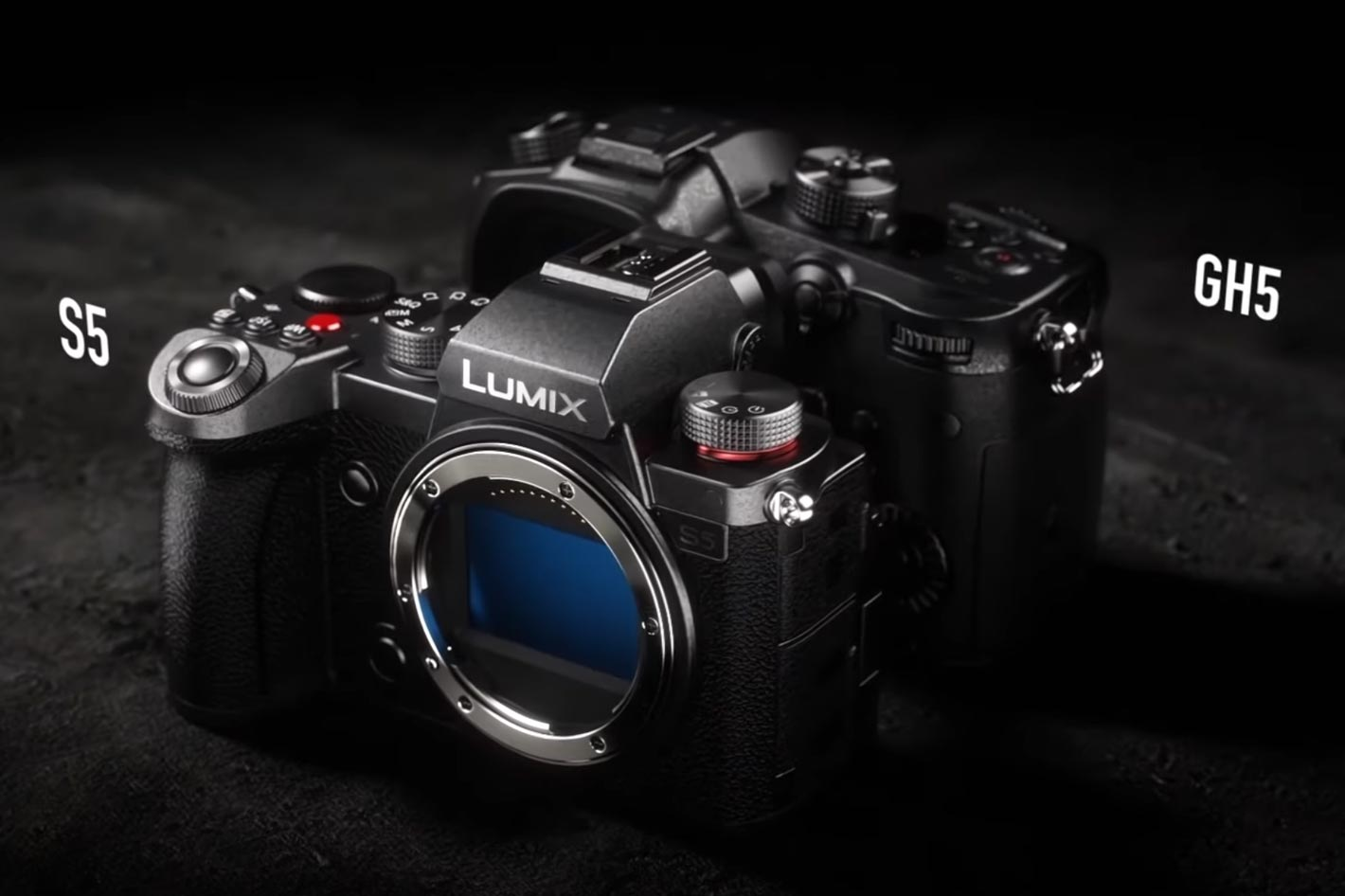 LUMIX S5: a new camera for videographers and photographers 3