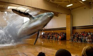 Magic Leap: a future without screens