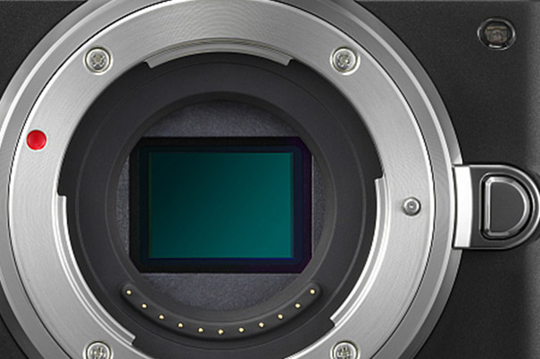 Has Micro Four Thirds Reached Its Pixel Limit? 3