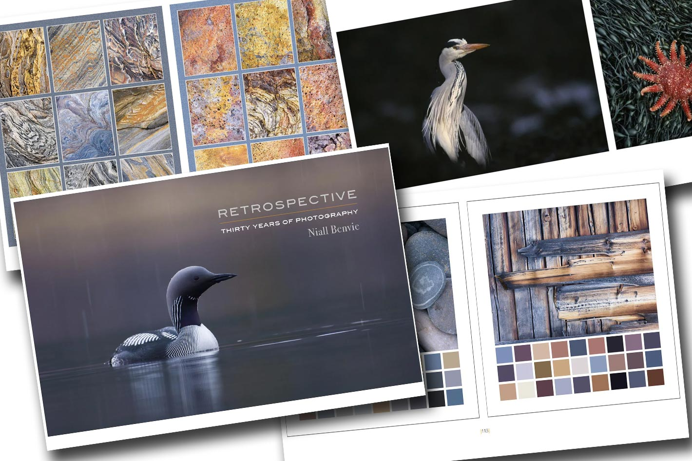 Creating your books and brochures with Affinity Publisher