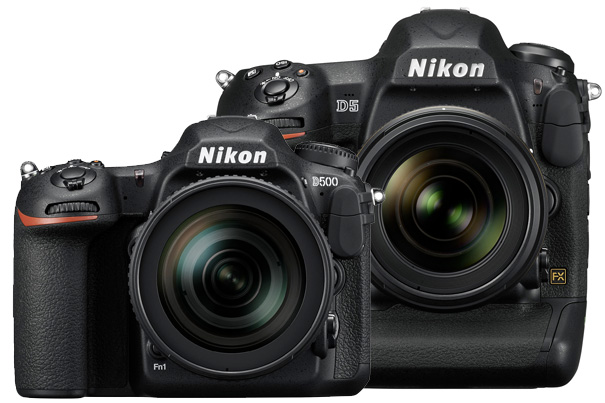 Nikon D5 and D500: two new real DSLRs with 4K UHD video 9
