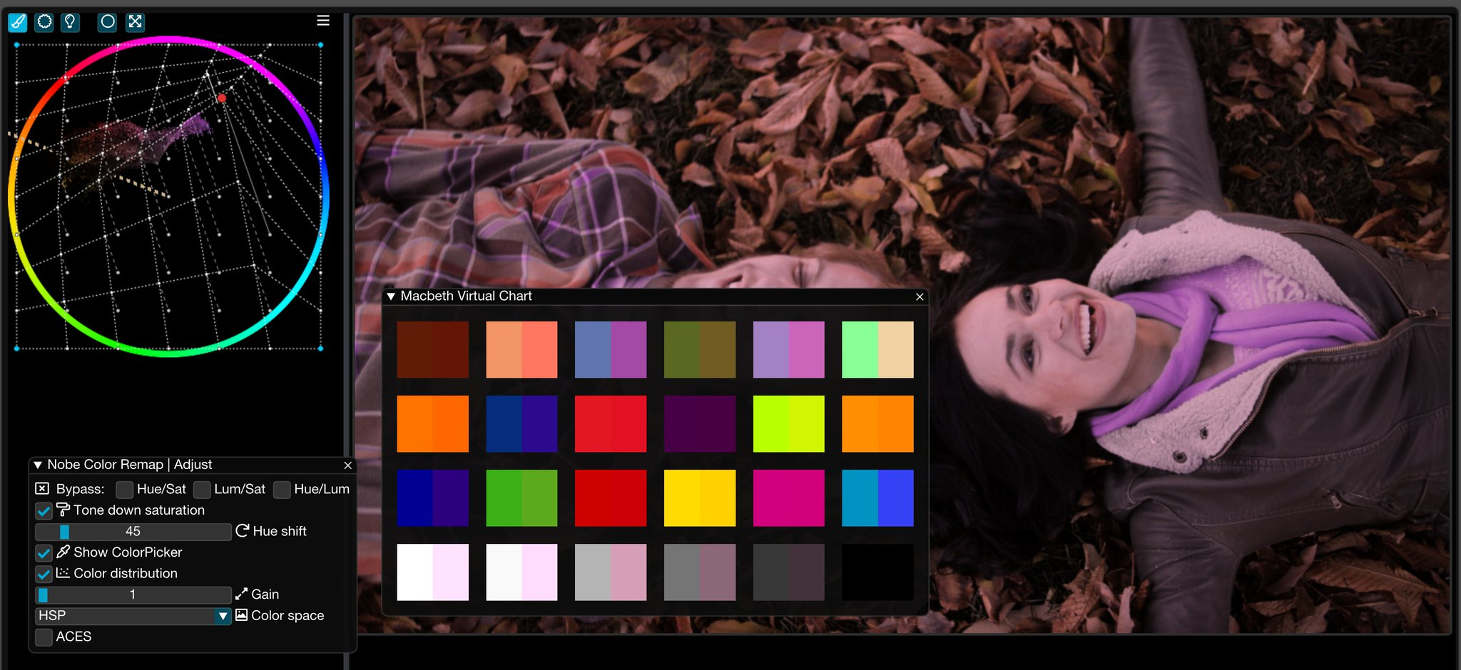 Nobe Color Remap for all your post-production tools. The original Color Warper 9
