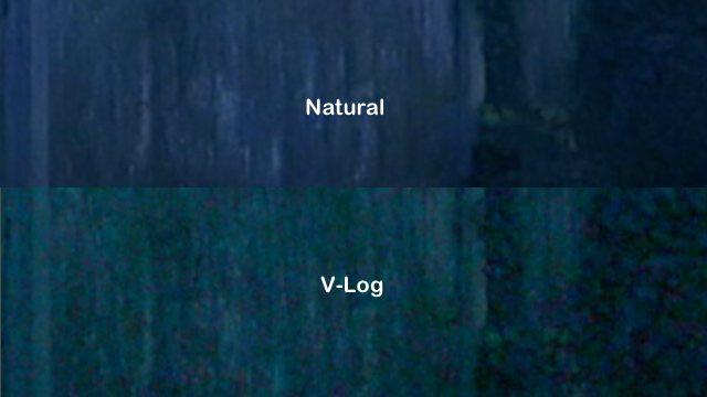 Outdoors, 1:1 detail comparison