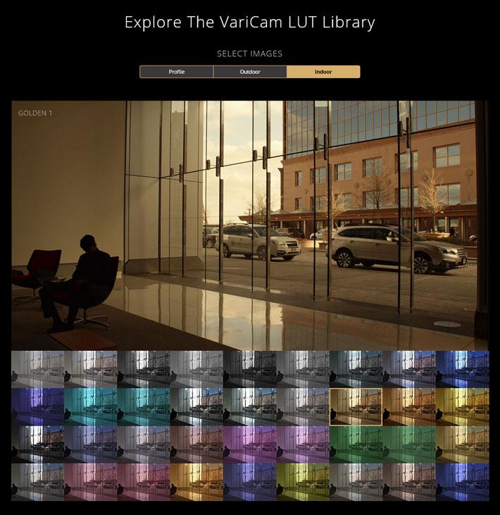 Panasonic's FREE VariCam and EVA1 LUT library