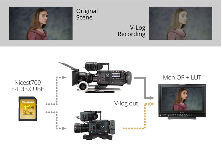 Panasonic's FREE VariCam and EVA1 LUT library