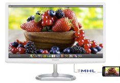 Professional monitor at a consumer price