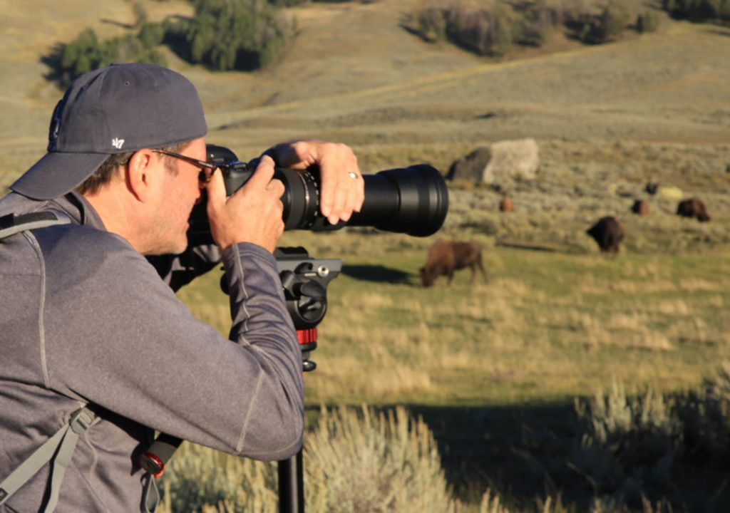 photograph-wild-animals-1.jpg