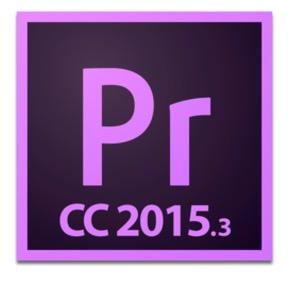 ppro-20153-custom-icon