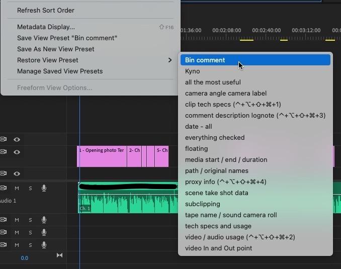Adobe Premiere Pro Quicktip: Add a Comment column for Bins 4