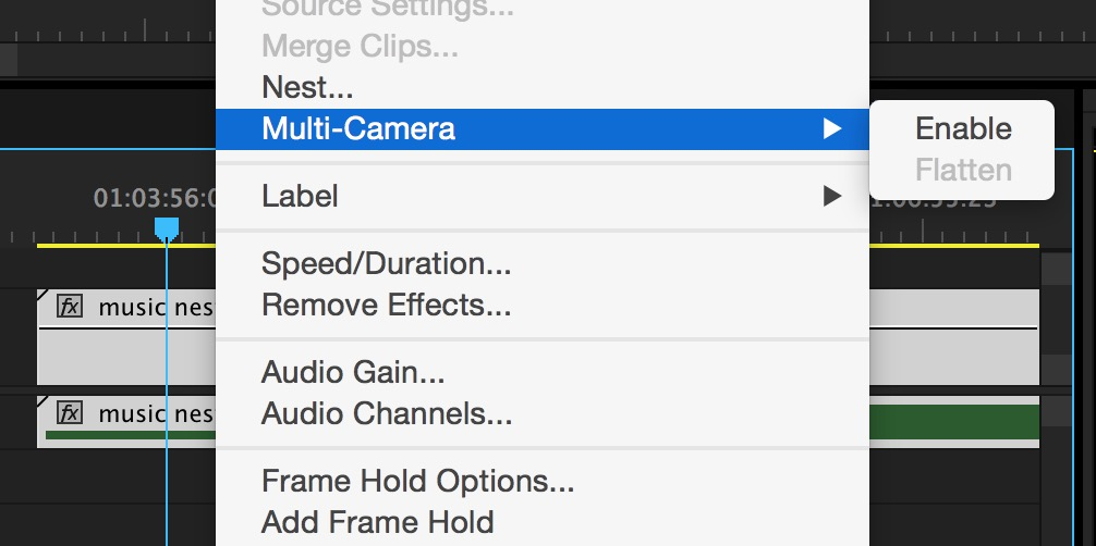 ppro multicam enable