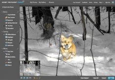 Photoshop Express Public Beta Begins