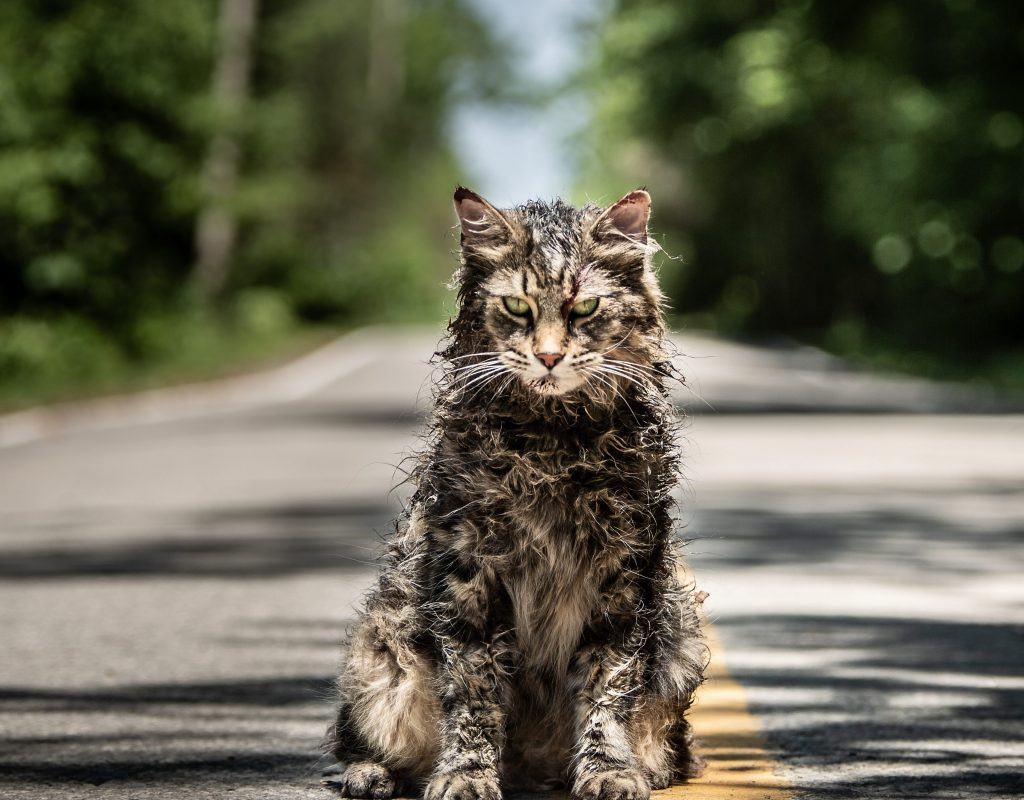 "ART OF THE CUT WITH ""Pet Sematary"" editor, Sarah Broshar 1"