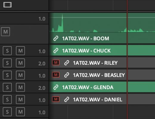 Adobe and Avid need to support iXML metadata for audio channels in the timeline