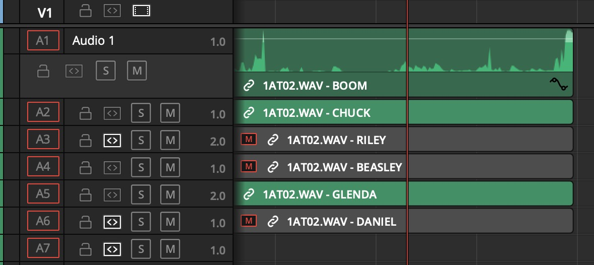 Adobe and Avid need to support iXML metadata for audio channels in the timeline 20