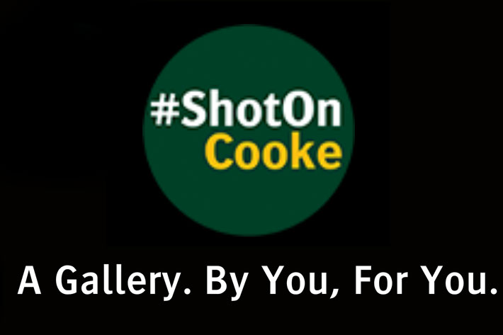 ShotOnCooke: a gallery to show how Cooke lenses are used