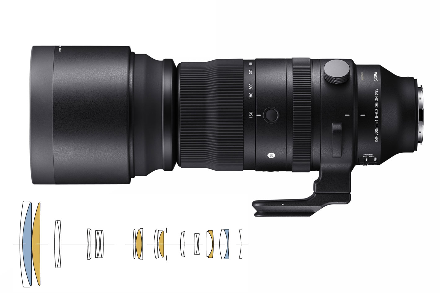 SIGMA 150-600mm: a first ever Sports lens for mirrorless systems
