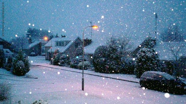 snowed2.jpg
