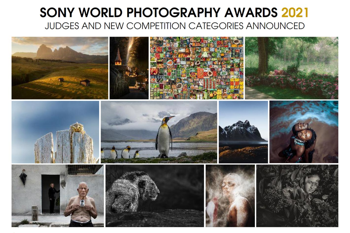 Sony World Photography Awards 2020: the free eBook