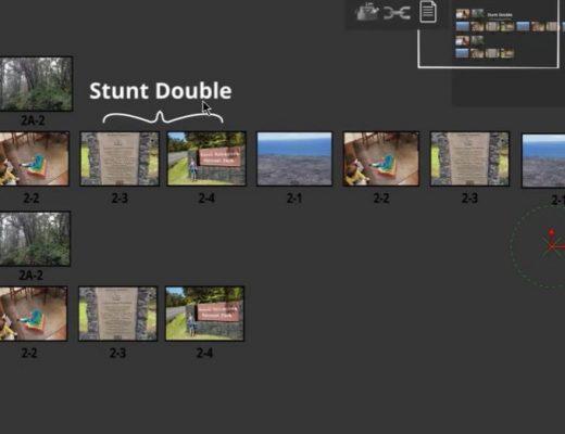 stunt double