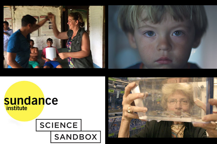 Sundance and Science Sandbox announce nine new grant recipients 3