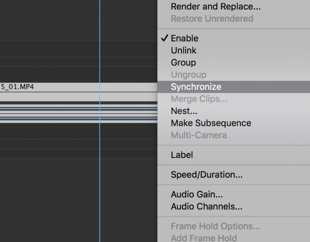Using 'Synchronize' in Premiere Pro 5