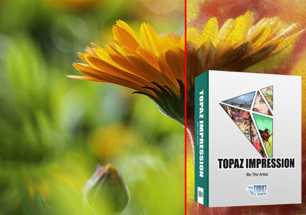 Topaz Impression 2: the democratic art tool